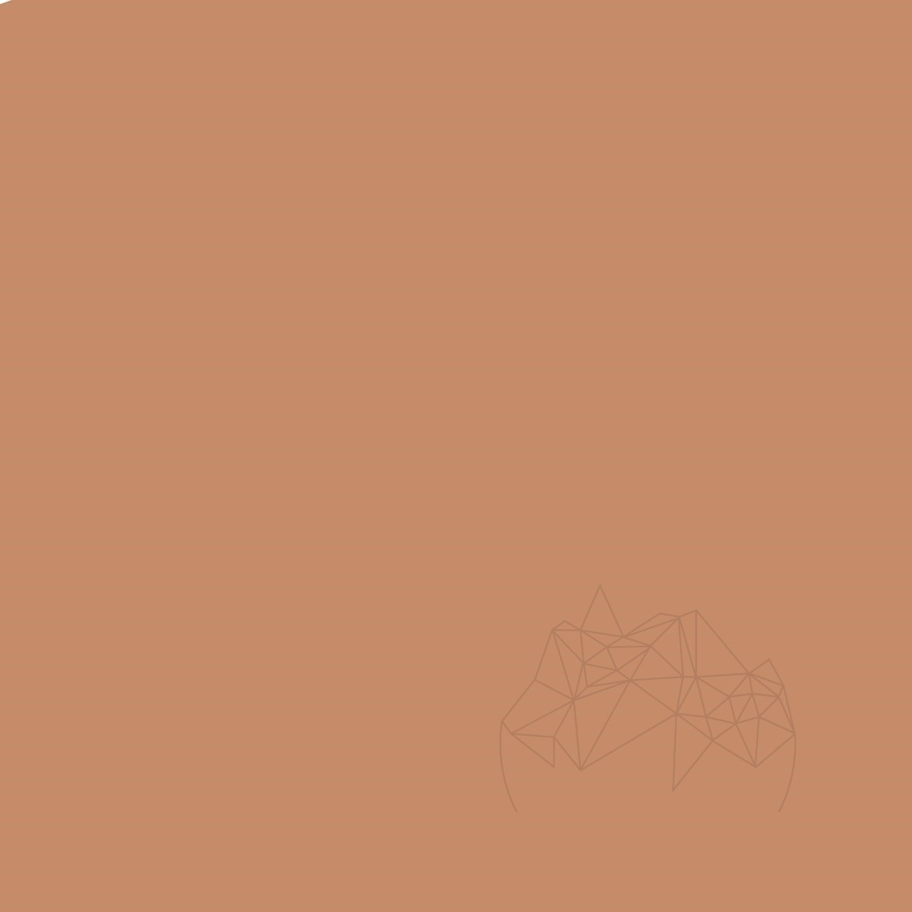 Chit Rosturi - Weber Color Perfect Caramel 2 KG title=Chit Rosturi - Weber Color Perfect Caramel 2 KG