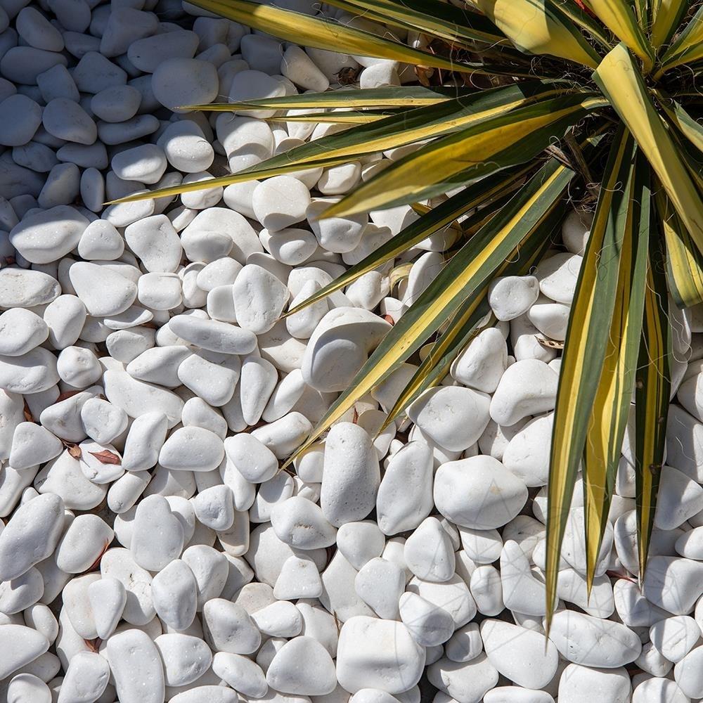 Thassos Marble Pebble KG (Big Bag)( 128256)
