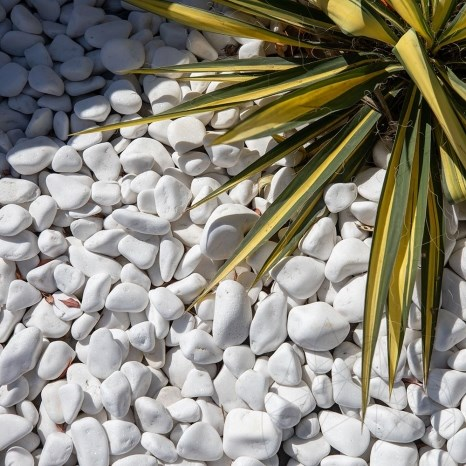 Thassos Marble Pebble  KG (Big Bag)