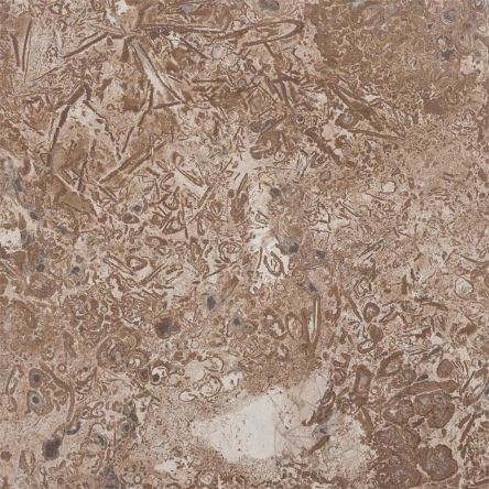 Latte Exotic Hexagonal Brushed & Chiseled Travertine 46 x 46 x 1.2 cm - Stock Clearance