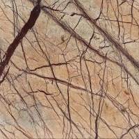 Rainforest Brown Marble Polished Countertop 250 x 65 x 3 cm